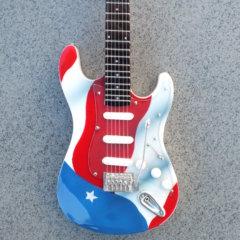 RGM670 Joe Perry Aerosmith American Flag 2