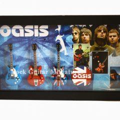 RGM8881 Oasis (3)